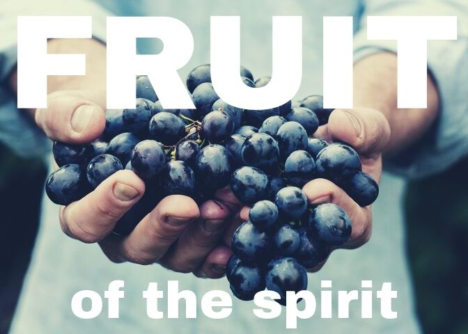 fruit of the spirit logo
